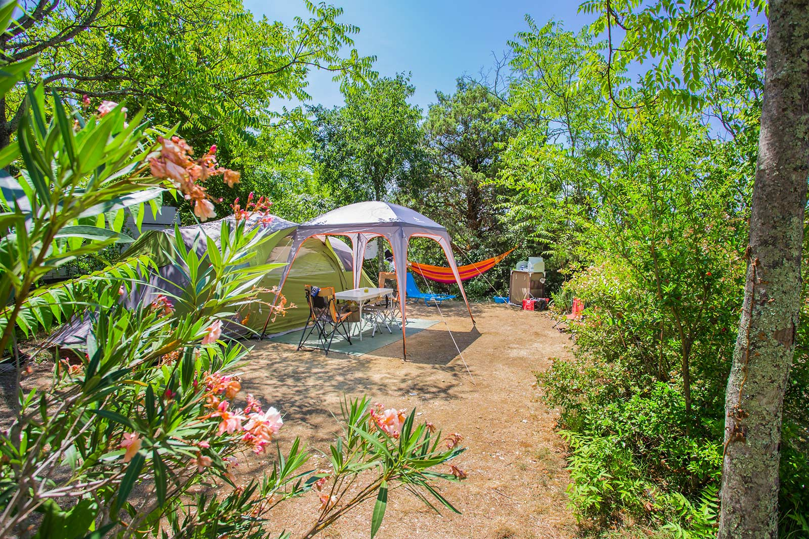Camping pitches in Ruoms  Vallon Pont dArc  Camping Le  ~ Camping Le Petit Bois
